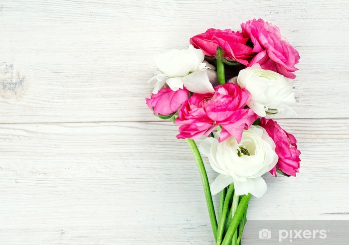 Pink And White Ranunculus Flowers On Woode Surface Wall Mural