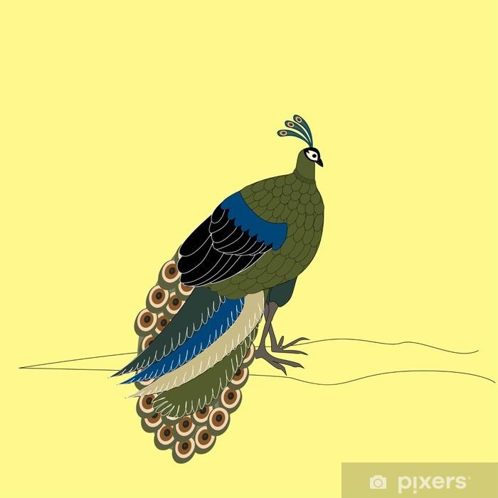 Plakat Piękny paw - Ptaki