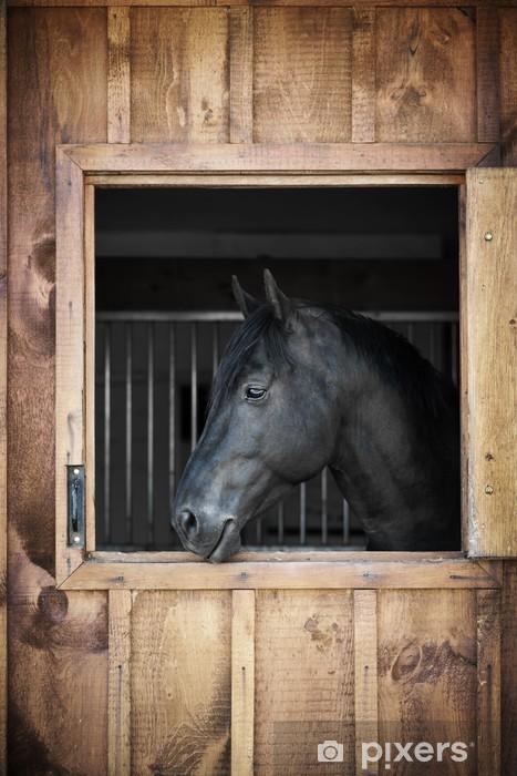 Pixerstick Dekor Häst i stabila - Teman