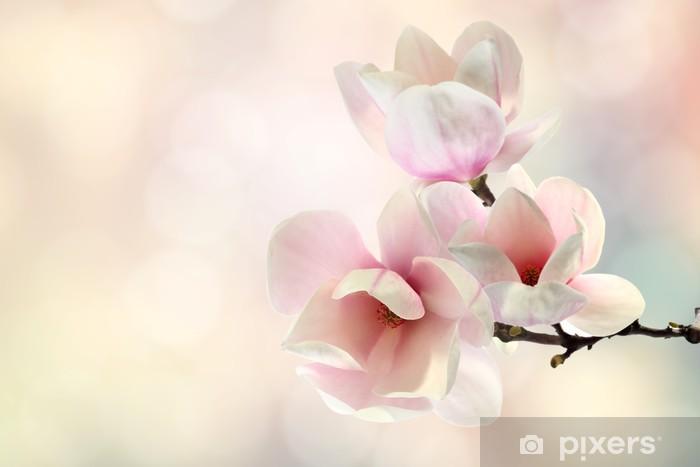 Papier peint lavable Magnolia - Thèmes