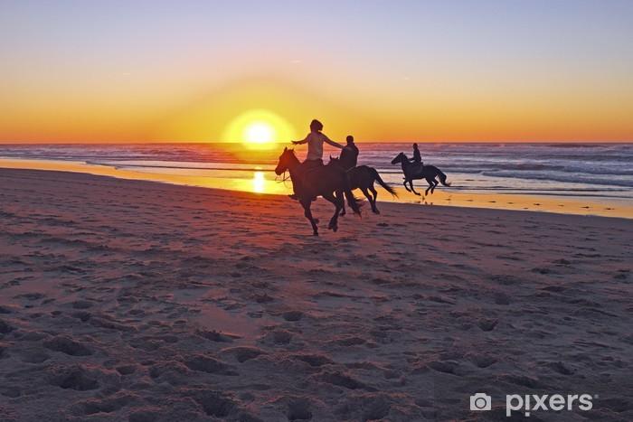 Mural de Parede em Vinil Horse riding on the beach at sunset - Desportos Individuais