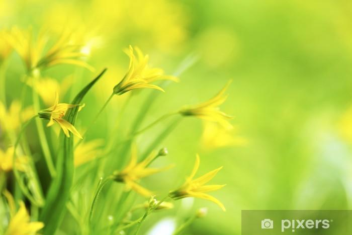 Sticker Pixerstick Yellow spring flowers - Fleurs
