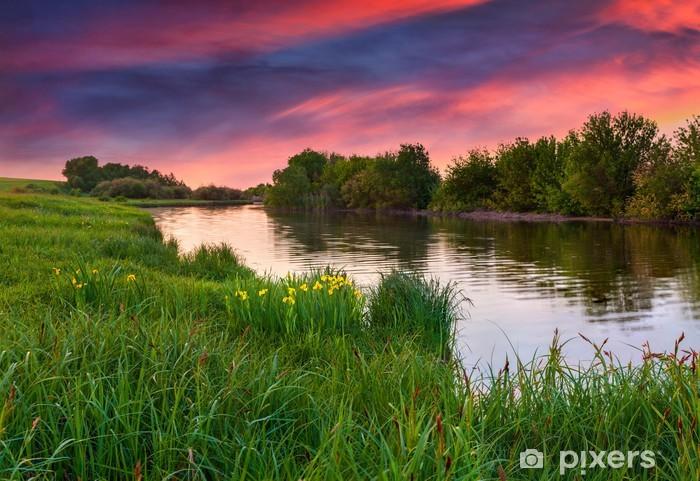 Fototapet av Vinyl Dramatisk solnedgång över blommande äng av floden - Teman