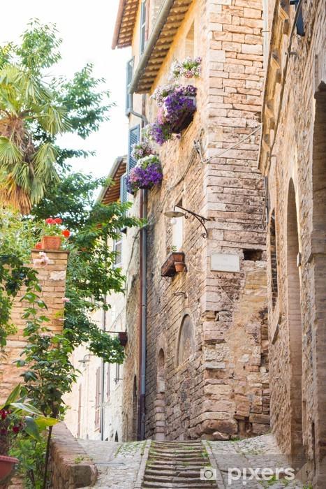 Papier peint vinyle Ruelle historique avec des fleurs - Europe