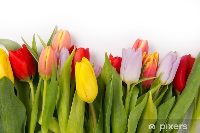 Sticker Pixerstick Tulipe bouquet - Fêtes internationales