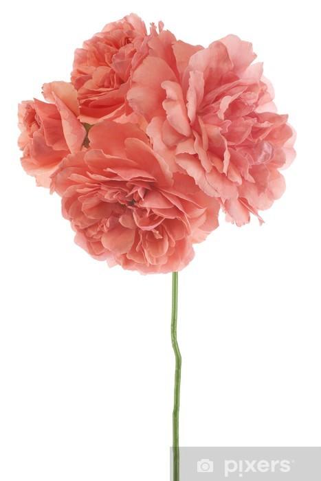 Naklejka Pixerstick Różowy - Tematy