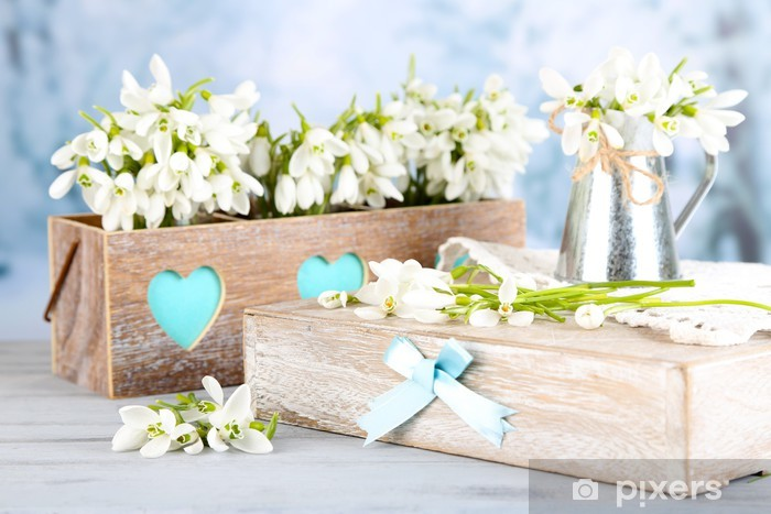 Beautiful spring composition with snowdrops Pixerstick Sticker - Flowers