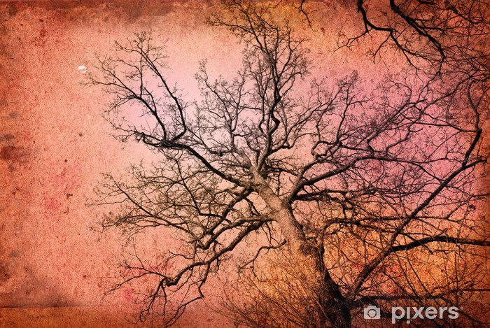 Fototapeta winylowa Staromodny krajobraz - Tła