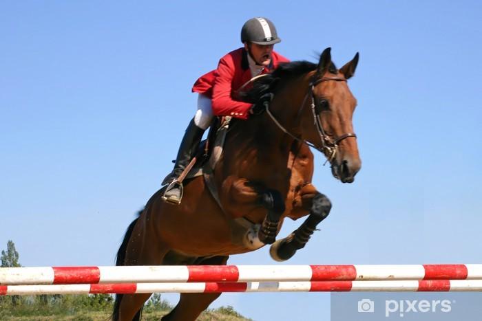 Mural de Parede em Vinil cheval jumping - Desportos Individuais