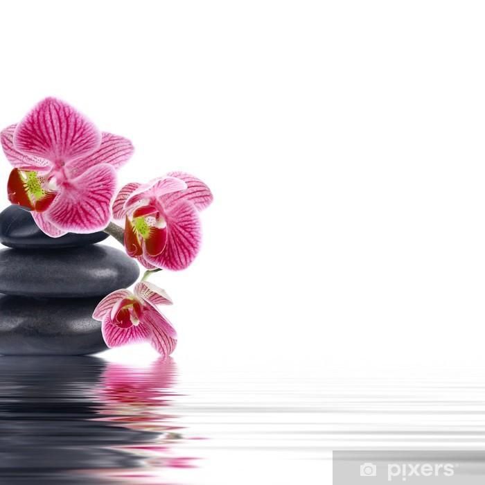 Vinyl-Fototapete Orchideenblüte in der Nahaufnahme mit Reflexion im Wasser - Blumen
