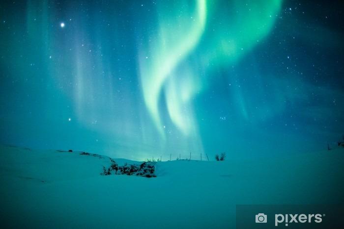 Fototapeta winylowa Zorza polarna (Aurora borealis) nad śniegiem - Tematy