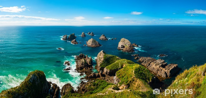 Nugget Point Vinyl Wall Mural - Themes