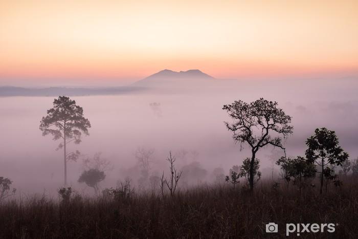Papier peint vinyle Savane avec le lever du soleil et le brouillard - Thèmes