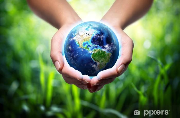 Papier peint vinyle Terre dans les mains - fond d'herbe - concept d'environnement - Ecologie