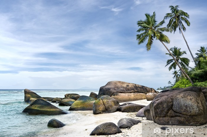 Spectacular palm-fringed beach of tropical island Pixerstick Sticker - Africa