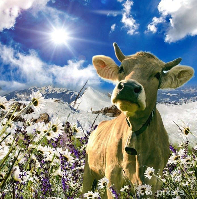Vinilo Pixerstick Vaca suiza feliz :) - Temas