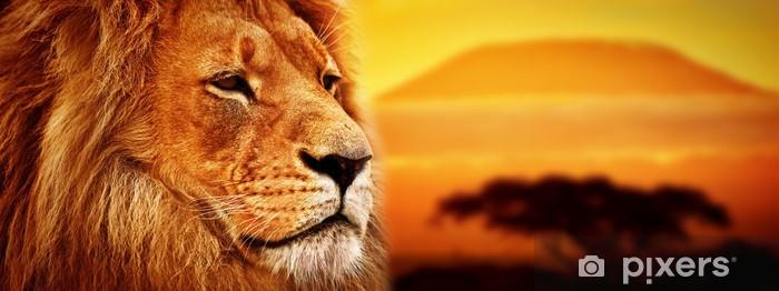 Fototapeta winylowa Portret lwa na sawannie. Kilimandżaro o zachodzie słońca. safari -