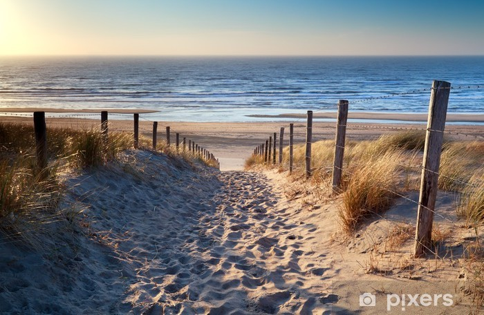 Vinilo Pixerstick Camino a la playa del mar del Norte en sol de oro - Destinos