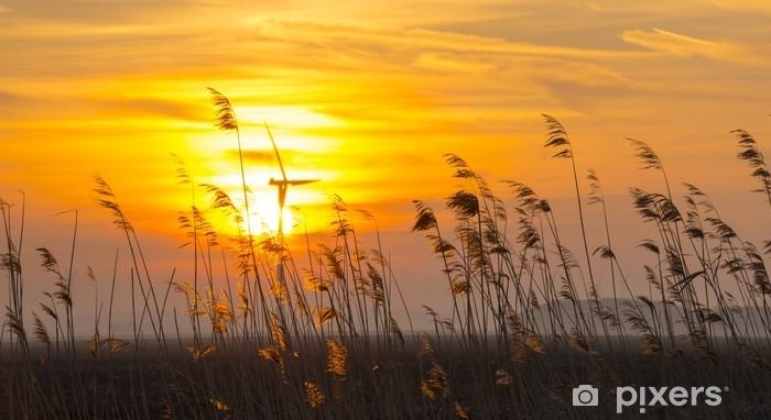 Naklejka Pixerstick Wschód słońca nad trzciną w polu w zimie - Krajobrazy