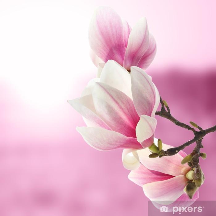 magnolia Pixerstick Sticker - Themes