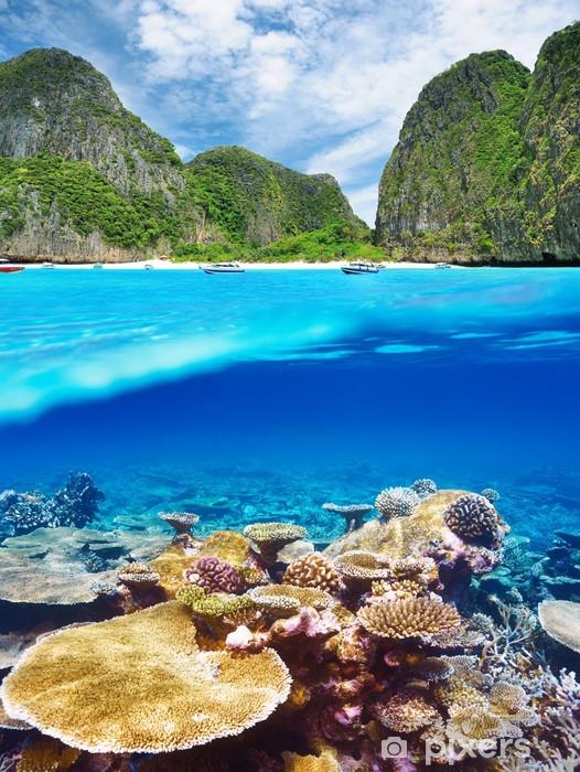 Vinyl-Fototapete Lagoon mit Korallenriff Unterwasser-Blick - Unterwasser