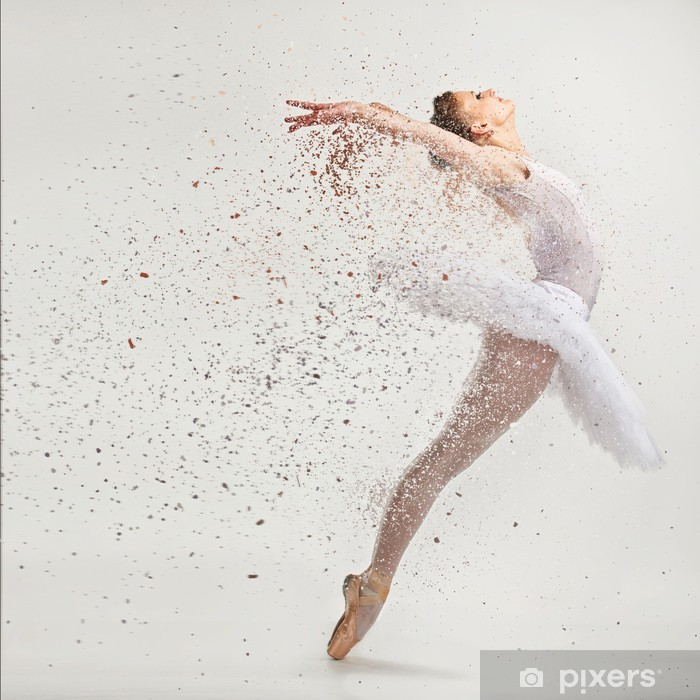 Young ballerina dancer in tutu performing on pointes Pixerstick Sticker - Themes