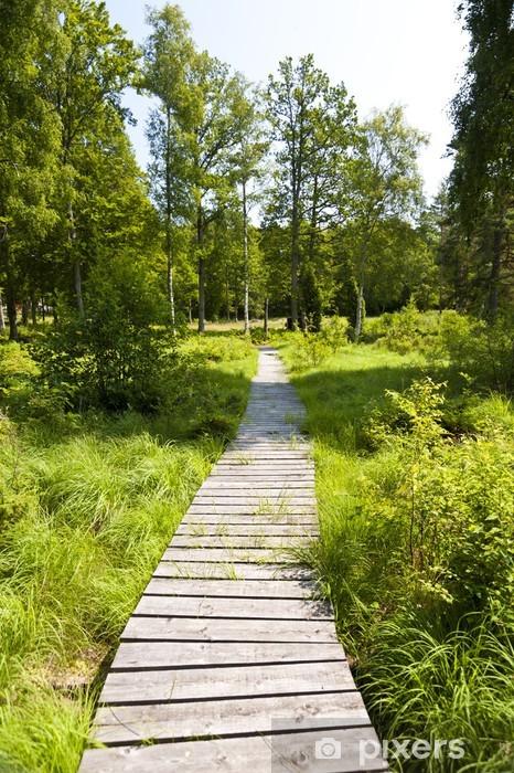 Landscape in Sweden Pixerstick Sticker - Europe