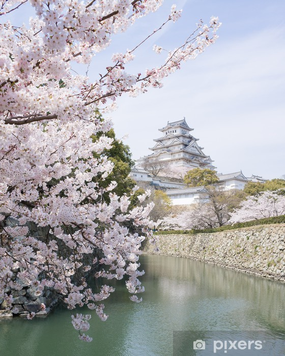 Cherry blossoms and castle in spring, Japan Pixerstick Sticker - Themes