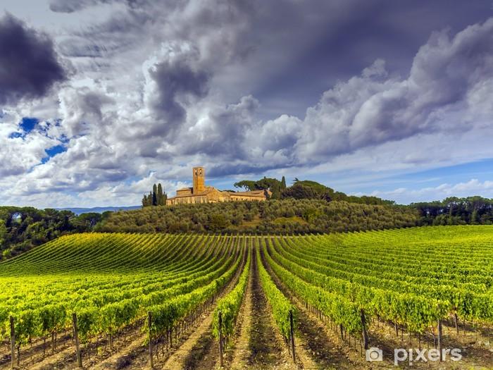 Fotomural Estándar Viñedos en la región de Chianti, en la Toscana, Italia - Temas