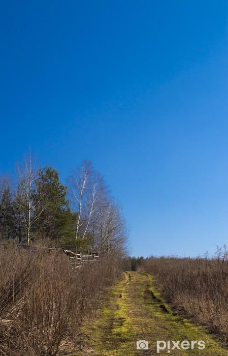 Naklejka Pixerstick Droga w polu - Pory roku