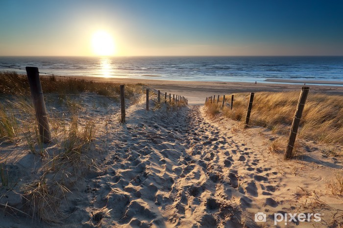 sunshine over path to beach in North sea Pixerstick Sticker - Destinations