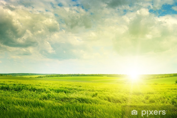 Sticker Pixerstick Champ vert et le lever du soleil - iStaging