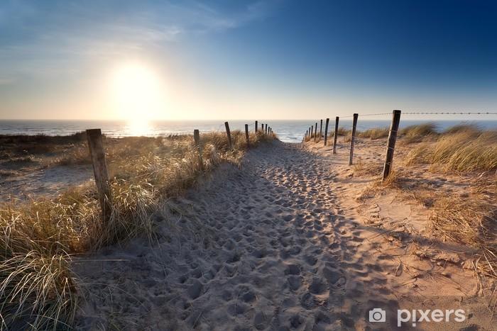 Papier peint vinyle Chemin de sable de plage de la mer du Nord - Thèmes