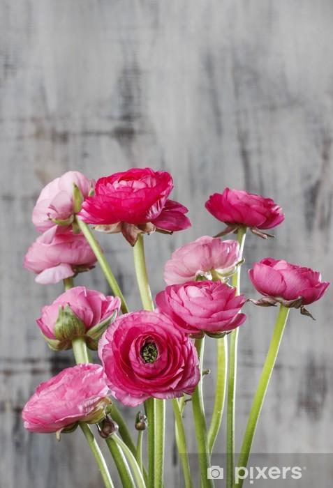 Papier peint vinyle Fleurs roses persan renoncule (Ranunculus) de sur fond de bois - Célébrations