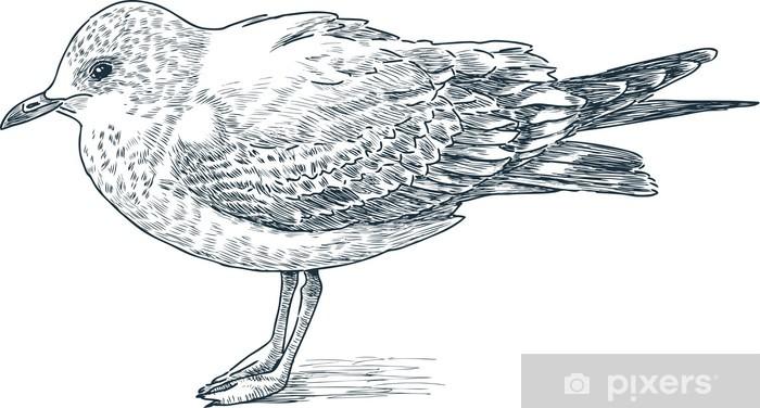 Papier peint vinyle Mouette - Oiseaux