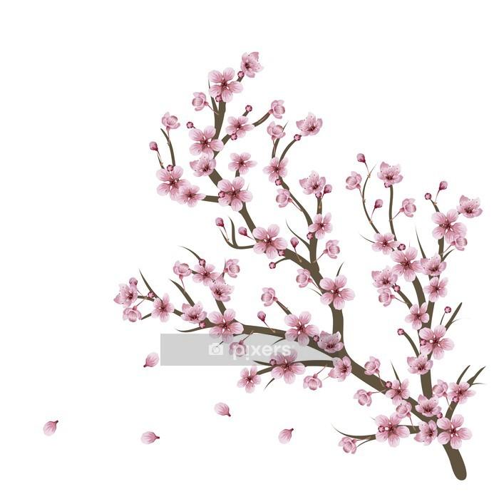 Naklejka na ścianę Kwiat wiśni oddział - Tematy