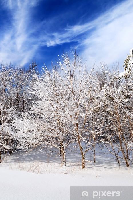Fototapete Winter Landschaft Von Einem Sonnigen Wald Nach Schweren