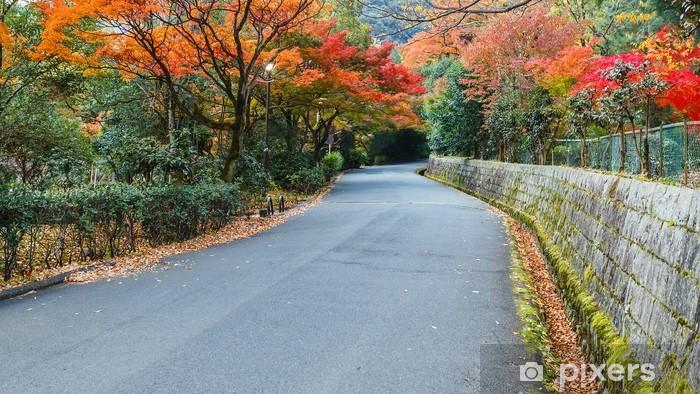 Vinyl Fotobehang De Weg van het Park op Maukama in Kyoto - Azië