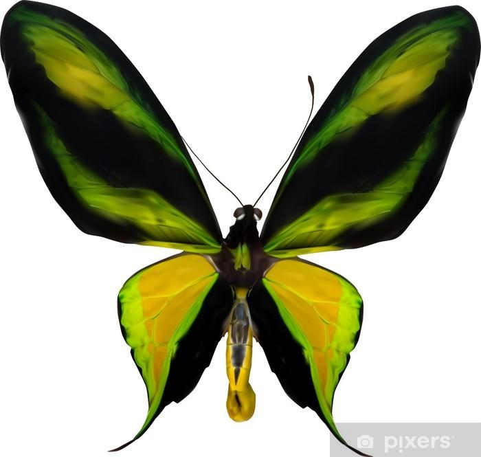 Sticker Pixerstick Illustration avec le papillon jaune et vert tropical - Autres Autres