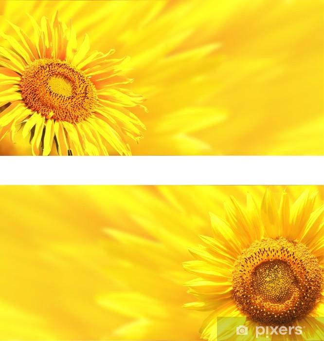 Fototapeta winylowa Transparenty z słoneczniki - Kwiaty