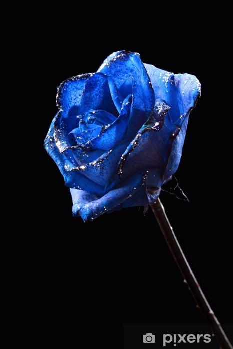Carta Da Parati Frizzante Rosa Blu Su Sfondo Nero Pixers