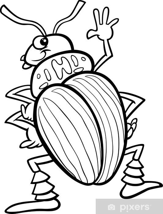 fototapete kartoffelkäfer insekten malvorlagen • pixers