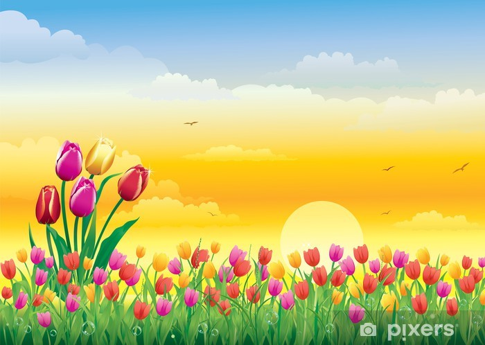 Flowery meadow on background of the solar sunset Vinyl Wall Mural - Skies