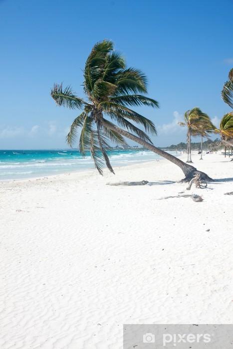 Naklejka Pixerstick Palma na plaży - Ameryka