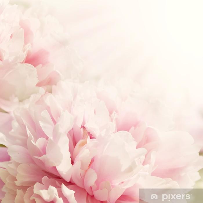 Fototapeta winylowa Nieostrości Zbliżenie kwiatu piwonii - Style