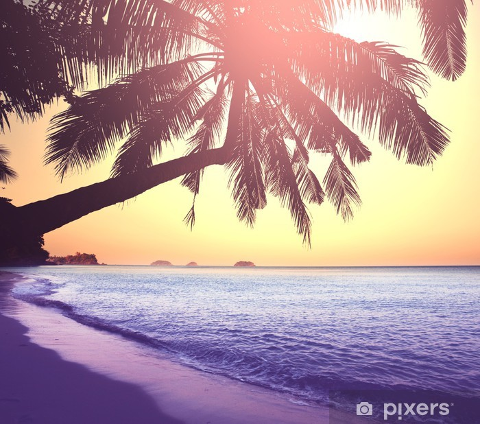 Pixerstick Aufkleber Tropical beach - Themen