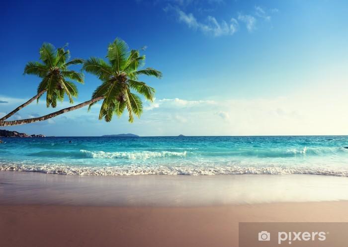 Vinilo Pixerstick Puesta de sol en la playa de Seychelles - Palmeras