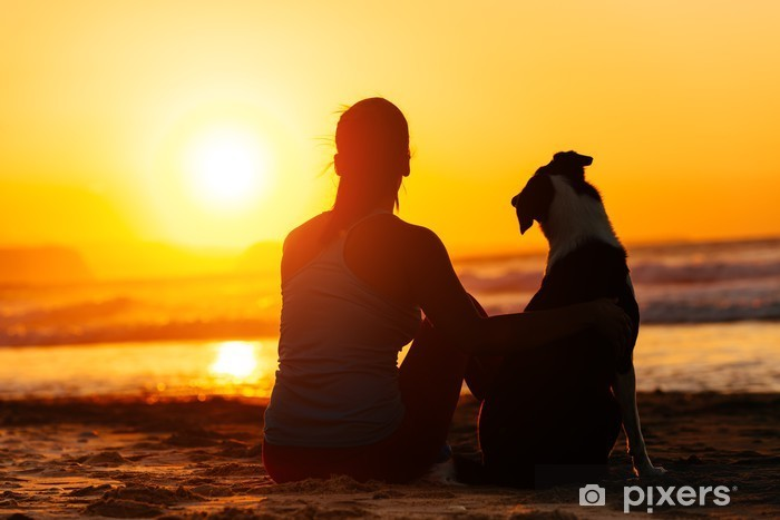 Vinylová fototapeta Žena a pes hledá letní slunce - Vinylová fototapeta
