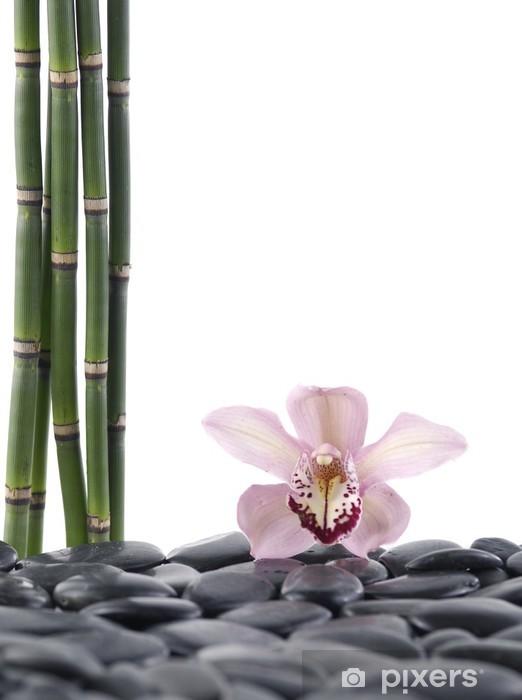 Vinyl-Fototapete Spa-Konzept-rosa Orchidee und Bambus-Hain - Stile