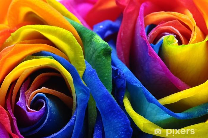 Naklejka Pixerstick Tęczowy kwiat róży lub szczęśliwy - Kwiaty